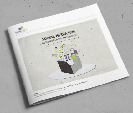 Social Media Insights - Roi messen